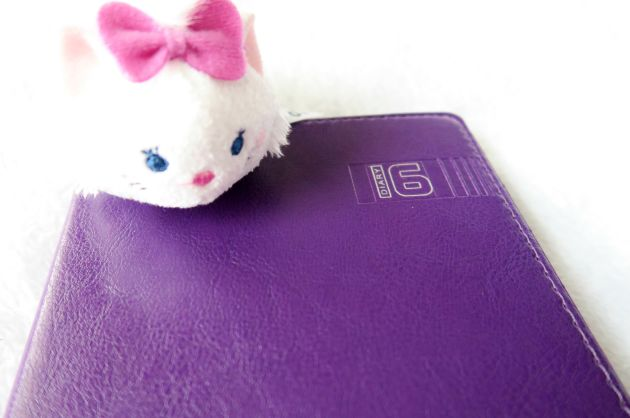 marie_diary